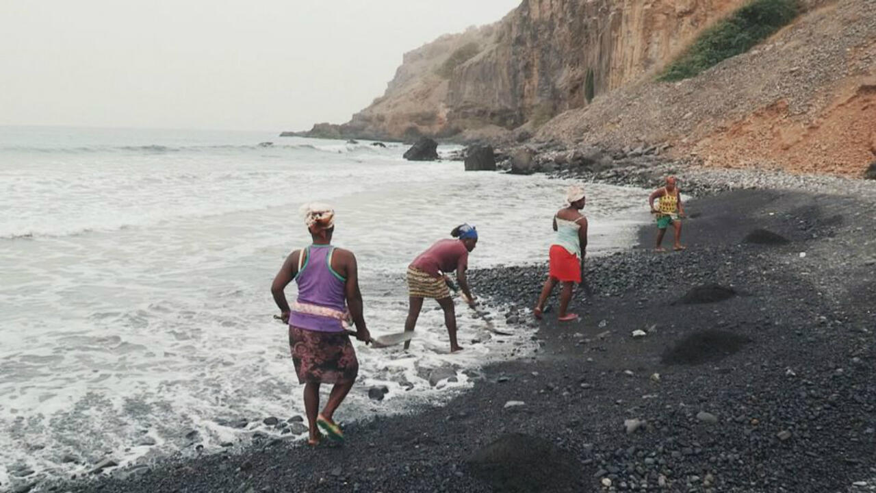 El ritual se repite de generación en generación: cada día, las mujeres de Cabo Verde recorren las playas y tamizan la arena, el oro negro de este archipiélago volcánico...