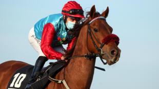 A jockey wearing a protective mask races in Germany last week