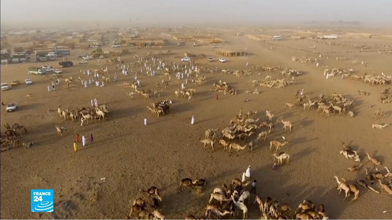 ريبورتاج السودان سوق المويلح