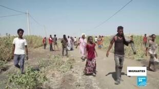 migrantes - Tigray
