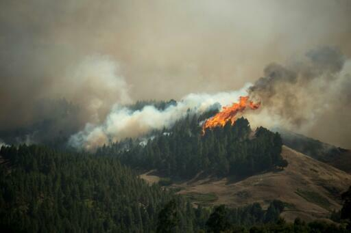 More evacuations as Canary Islands fire out of control