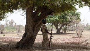 Soldat nigérian, dans l'État de Yobe, en avril 2017