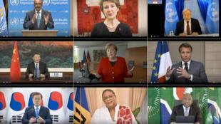 صورة من موقع منظمة الصحة العالمية مركّبة من لقطات من تسع تسجيلات مصورة بتاريخ 18 أيار/مايو 2020 من موقع منظمة الصحة العالمية