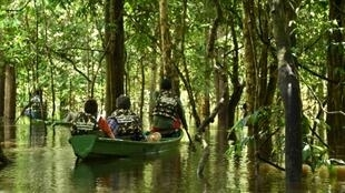 President Jair Bolsonaro has previously floated the idea of opening up protected rainforest areas to agriculture