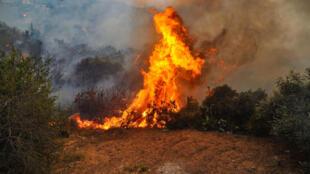 صورة نشرتها وكالة الأنباء السورية الرسمية (سانا) في 10 تشرين الأول/أكتوبر 2020 تظهر حريقًا يلتهم غابة في محافظة اللاذقية السورية في اليوم السابق