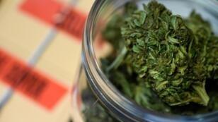 A partir du 20 novembre 2018, deux magasins dans la région de Boston sur la côte est américaine pourront vendre du cannabis récréatif