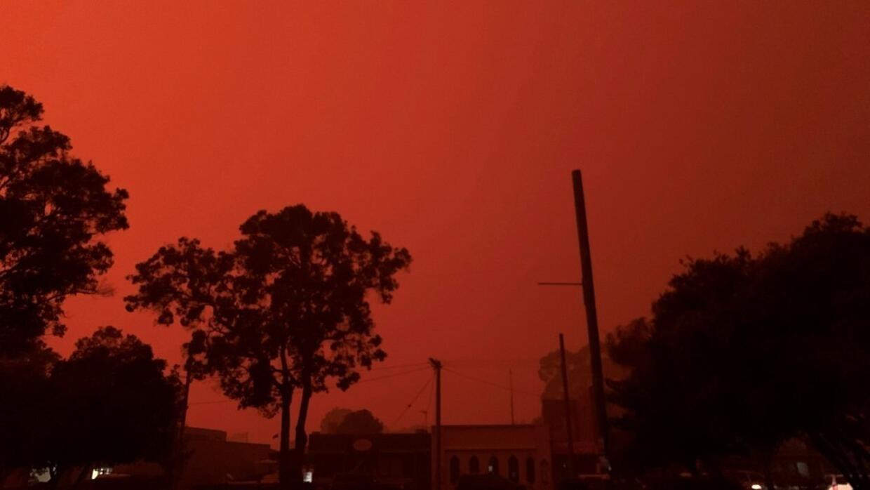 Image result for australian bush fires