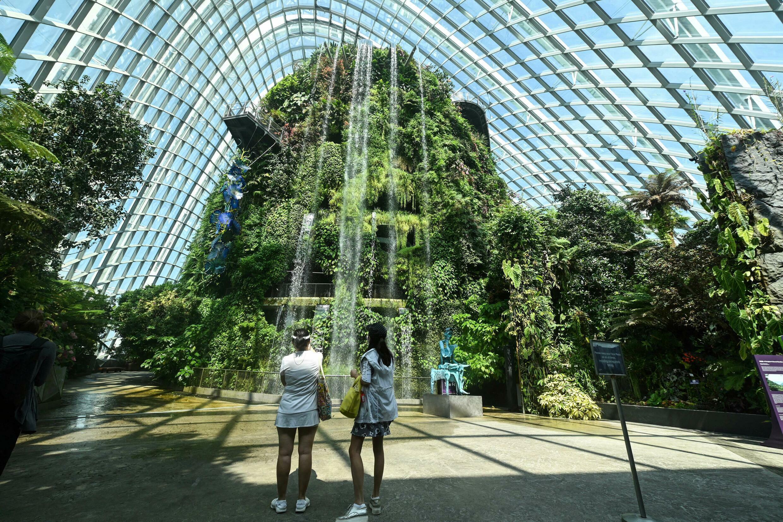 Le site Gardens by the Bay est l'emblème de Singapour, l'attraction de la ville-État près du nouveau quartier d'affaires.