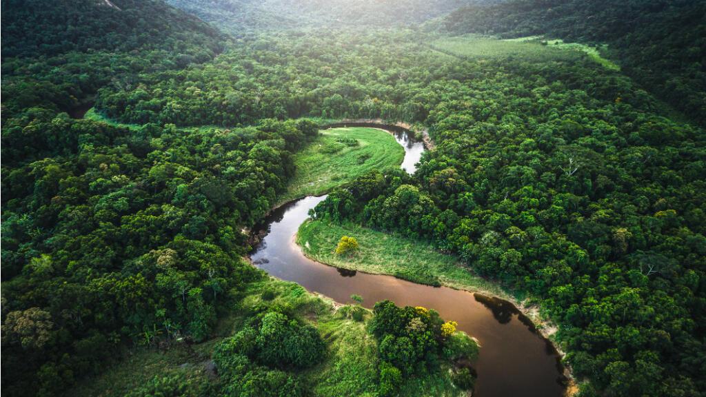 Manaos, capital del estado de Amazonas, Brasil.