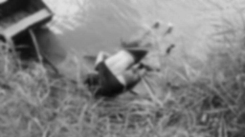 Fotografía a los cuerpos sin vida de un migrante y su bebé a una orilla del Río Bravo en Matamoros, frontera con EE.UU., en el estado de Tamaulipas (México).
