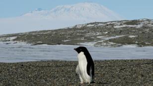 Hausse des températures, niveau des océans, espèces menacées, fonte des glaces... les indicateurs du réchauffement climatique sont inquiétants.