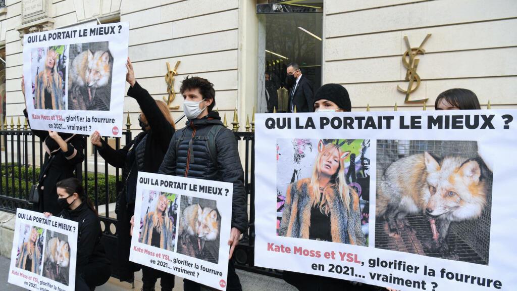 Saint Laurent renonce à son tour à utiliser de la fourrure animale