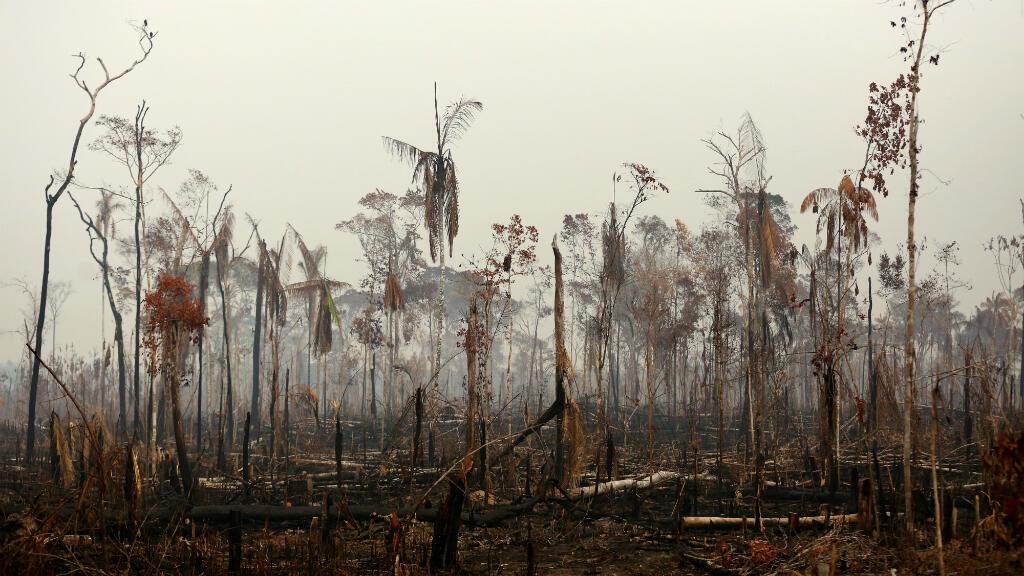 Vista de un tramo de la selva amazónica después de un incendio en Boca do Acre, estado de Amazonas, Brasil, el 24 de agosto de 2019.