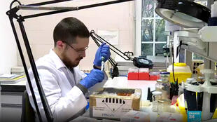 En Espagne, José Alcami, directeur de recherche au centre d'immunologie et de microbiologie national, a fait, avec son équipe, une découverte exceptionnelle qui pourrait révolutionner la recherche conte le sida.