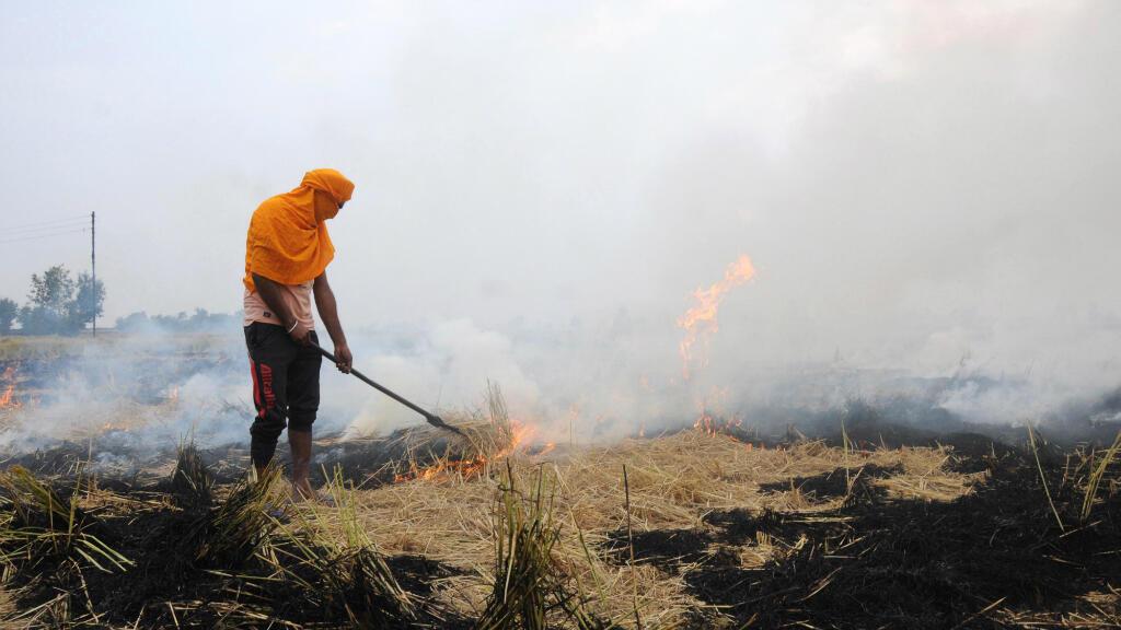 Un campesino indio quema sus campos en cerca de Amritsar, India, otra región afectada por la ola de polución, este 2 de noviembre de 2019