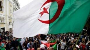 En Algérie, l'annonce fin février de la candidature du président Abdelaziz Bouteflika à un cinquième mandat a provoqué un mouvement de contestation inédit.