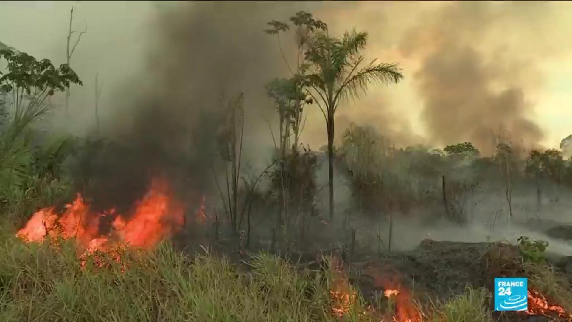 Les ONG s'inquiètent de l'arrivée de l'été qui pourrait provoquer  de nouveaux incendies en Amazonie.