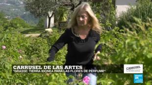 Grasse, una ciudad ubicada al sur de Francia, es el lugar en donde se cultivan las flores para perfumes