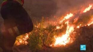 2020-07-27 11:12 Incendies au Portugal : état d'alerte dans le centre du pays