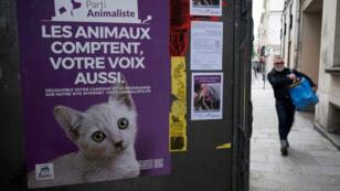 Une affiche du Parti animaliste pour les élections législatives 2017, le 7 juin 2017, devant un bureau de vote parisien.