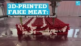 EN vignette 3D printed fake meat