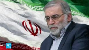 العالم الإيراني محسن فخرى زادة