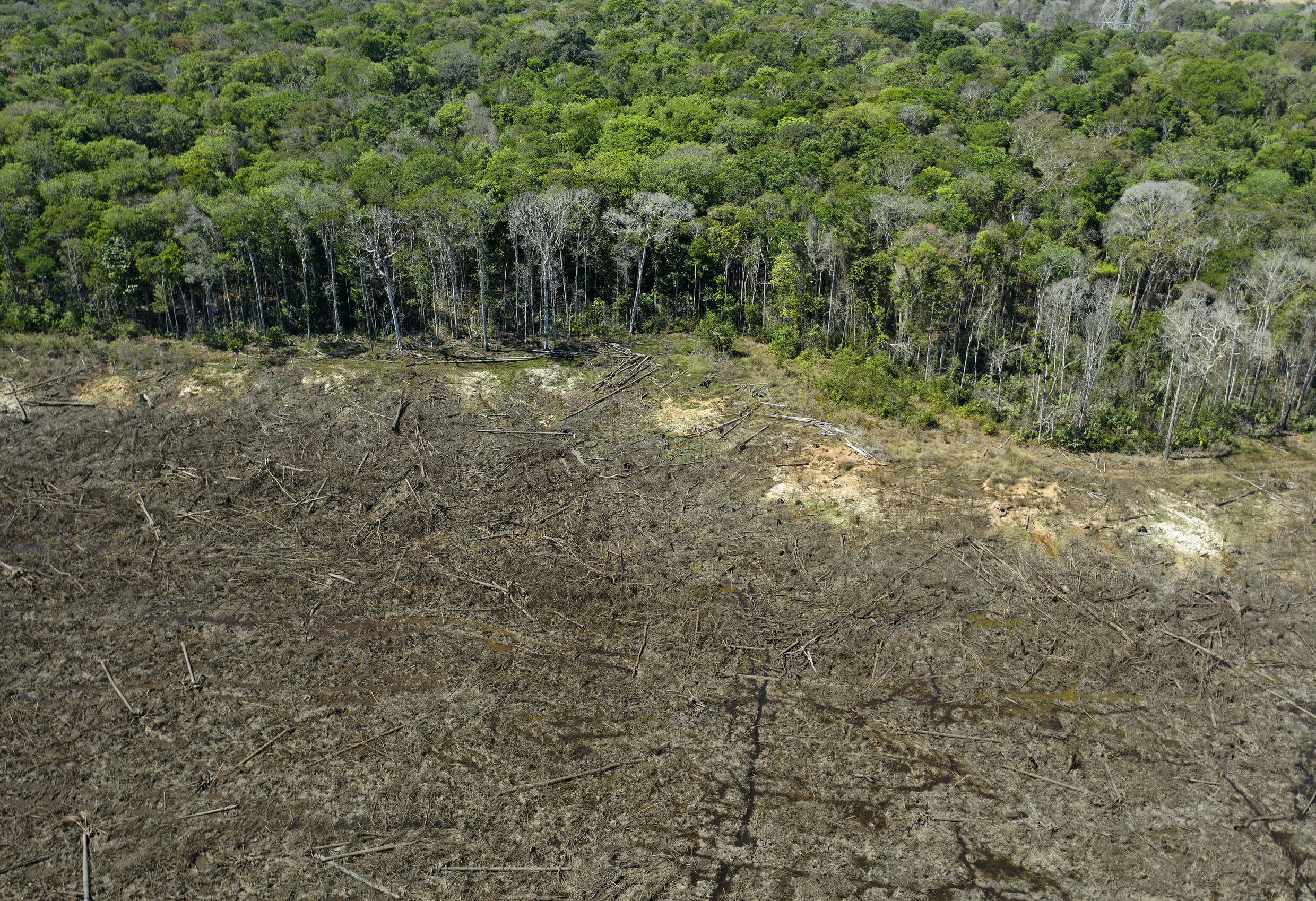 Aerial view of a deforested area near Sinop, Mato Grosso state, Brazil, taken on August 7, 2020