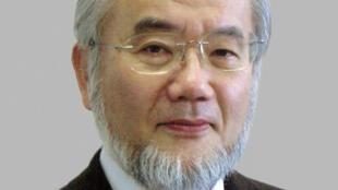 Yoshinori Ohsumi, 71 ans, a obtenu son doctorat en 1964 de l'université de Tokyo et est professeur à l'institut de Technologie de la capitale nippone depuis 2009.
