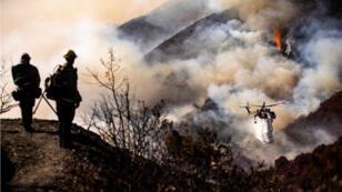 El humo se agita durante un incendio en un área de la selva amazónica cerca de Porto Velho, estado de Rondonia, Brasil, Brasil, 21 de agosto de 2019.