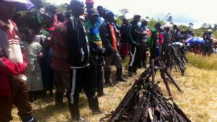 En juin 2014, 97 membres des FDLR s'étaient rendus à Walikale ; en tout, seulement 350 auraient déposé les armes, selon l'ONU.