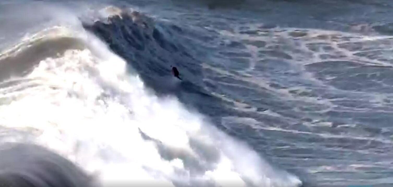 new surf