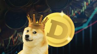 Doge cryptomonnaie