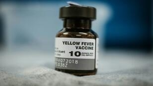 Earlier this year, authorities in Brazil sought to vaccinate millions of people against yellow fever