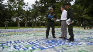 Le président Juan Manuel Santos avec deux policiers marchant sur un parterre de drogue, le 8 novembre, à Apartado, en Colombie.