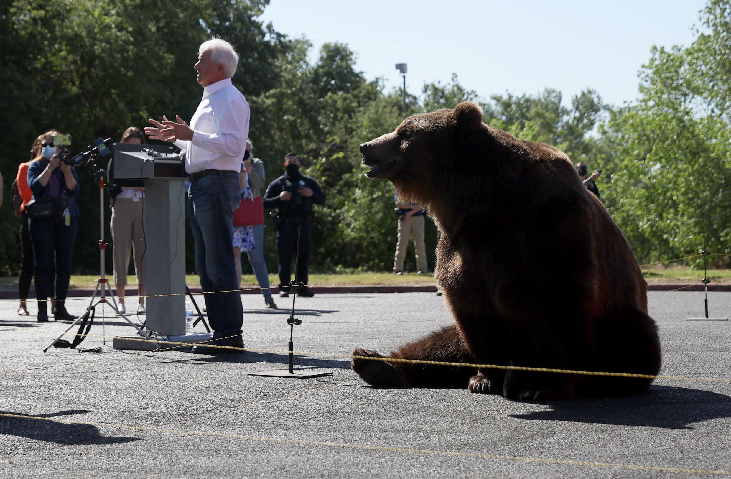 Among the 46 challengers for the governorship is John Cox, who launched his campaign with the help of a huge Kodiak bear