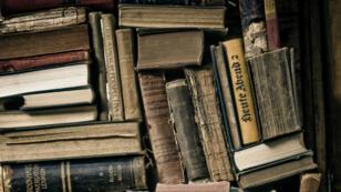 Une bibliothèque au Chili. Image d'illustration.