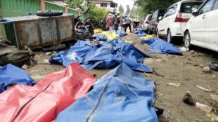 Decenas de cadáveres encontrados en una calle de Palu tras el terremoto y el tsunami que golpearon la ciudad indonesia, el 29 de septiembre de 2018.