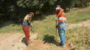 Des migrants recueillis par l'association Terre en partage apprennent le maraîchage.