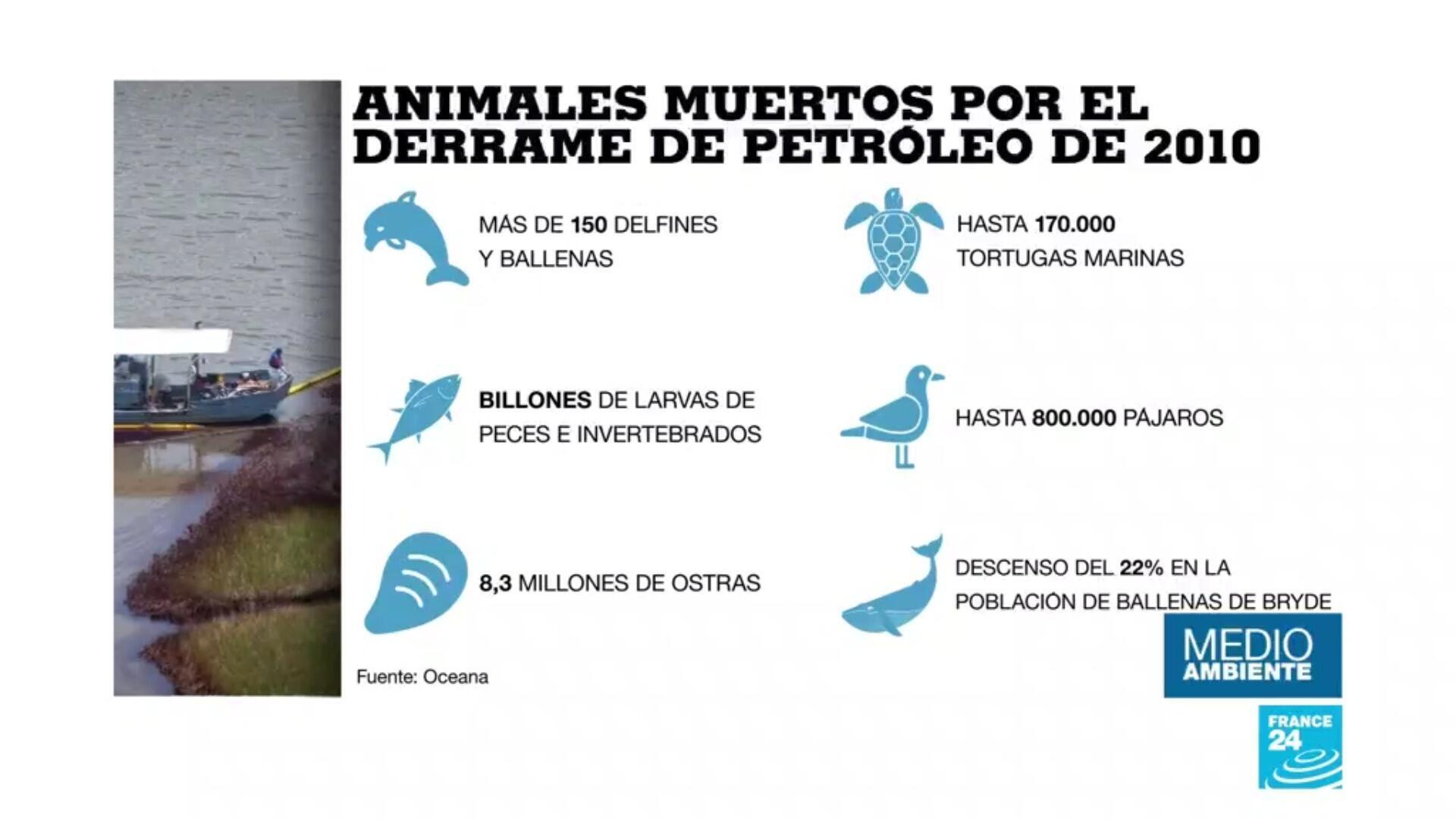 Estimado de los animales muertos a causa del derrame de petróleo de BP.