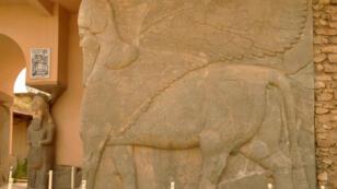 Le site antique de Nimrod, joyau de l'empire assyrien fondé au XIIIe siècle avant JC, est situé à une trentaine de kilomètres de Mossoul, sur les berges du fleuve Tigre.