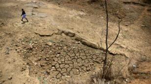 L'Inde souffre du réchauffement climatique qui provoque de grave sécheresse comme ici en avril 2016, dans le village de Katra, dans le nord du pays.
