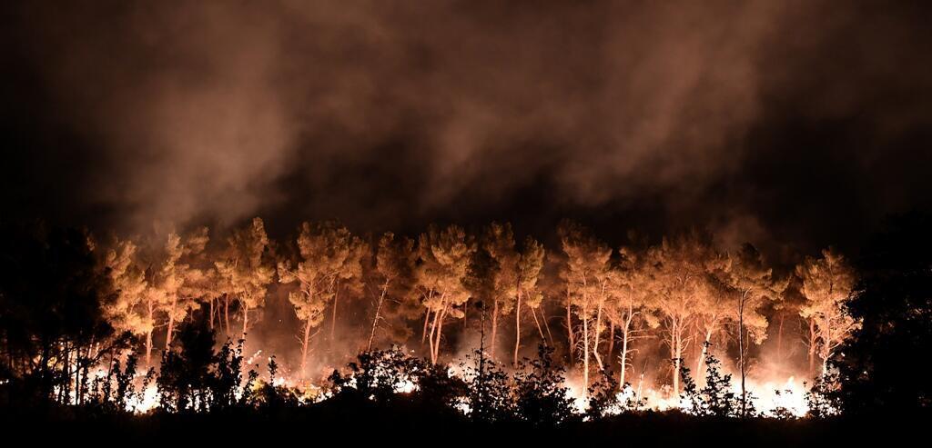 Les flammes à Les Pennes-Mirabeau, près de Marseille, le 11 août 2016.
