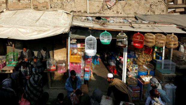 Decenas de jaulas cuelgan de los muros de las tiendas en el mercado de Ka Faroshi.