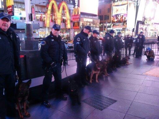 ضباط الشرطة يحضرون الحفل برفقة كلابهم