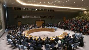 Vista de una sesión del Consejo de Seguridad de Naciones Unidas, el 9 de enero de 2020 en Nueva York