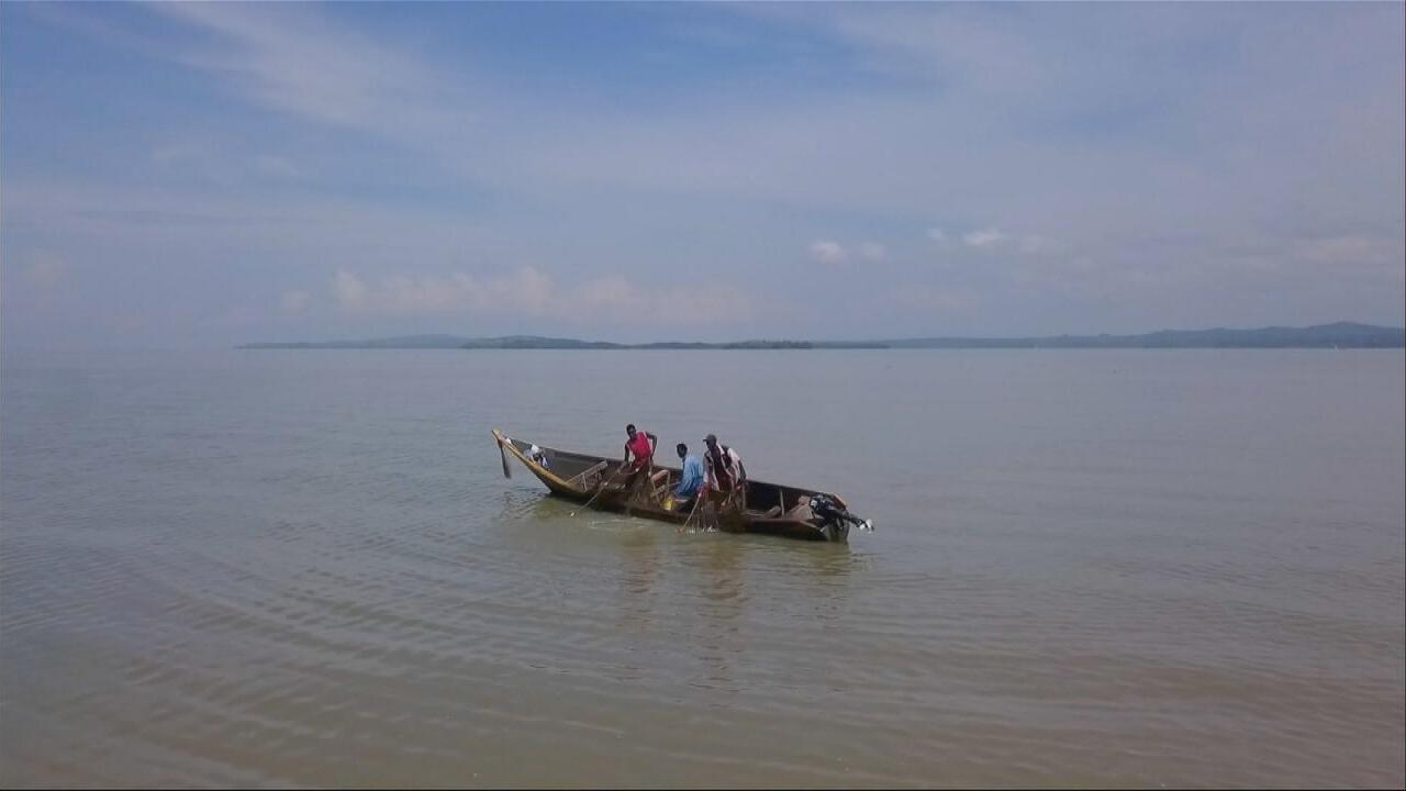 Focus - Lake Victoria's massive pollution: Africa's largest lake is dying