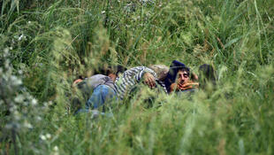 A group of illegal immigrants rests in high grass near an abandoned brick factory near the northern Serbian city of Subotica on June 16, 2015