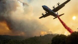طائرة لإخماد النيران تلقي المياه فوق حريق في هيلدسبرغ بولاية كاليفورنيا في 20 آب/أغسطس 2020.