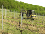French winemakers battle to keep crops alive during Covid-19