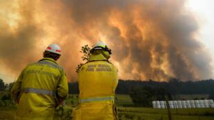 Des pompiers face à un incendie, le 12novembre2019, près de CoffsHarbour, en Australie.
